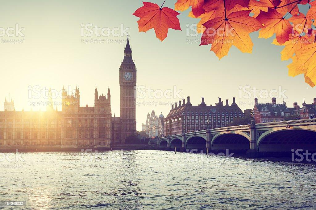 Herbst Blätter und Westminster, London, GB Lizenzfreies stock-foto