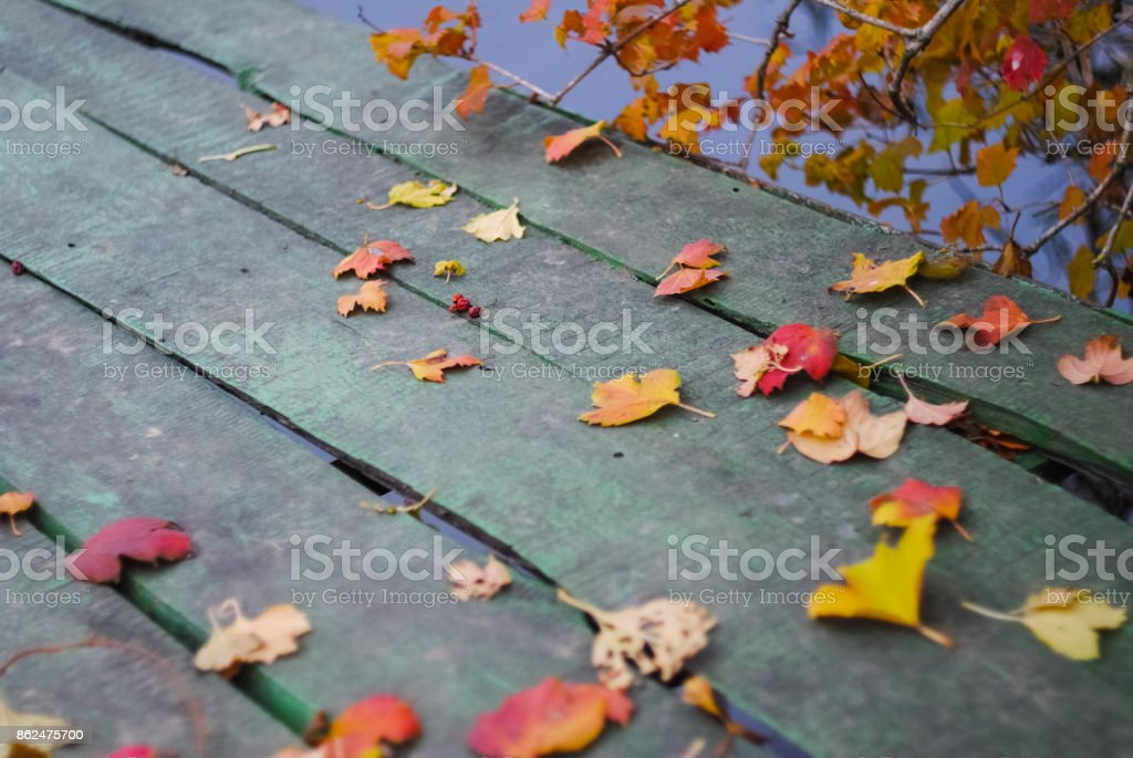 Autumn leaves are scattered on the wooden bridge stock photo