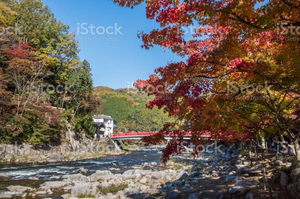 Autumn leaves at Korankei , Japan stock photo