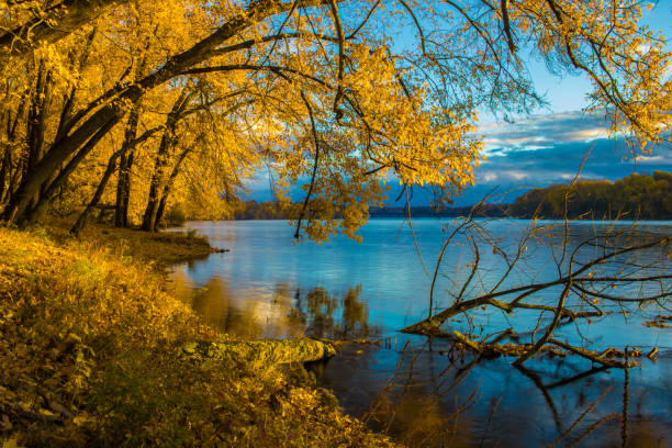 Autumn leaves before sunrise on the Connecticut River stock photo