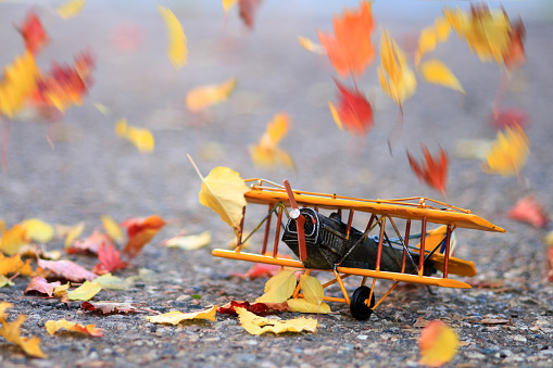 Autumn leaves blowing around a toy plane