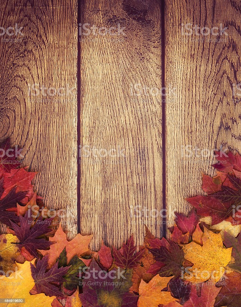 Autumn leaves border against wood background stock photo