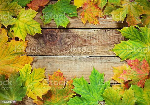 Autumn leaves border on rustic background picture id492083716?b=1&k=6&m=492083716&s=612x612&h=7xvdlsi8aq3dsycntmsuyknswqhdndsmk46dfqf onm=