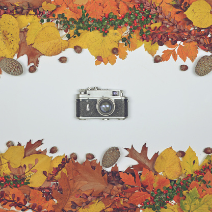 istock Autumn leaves cones and acorn on white background with vintage camera in center - Flat lay of Autumnal background 649767952