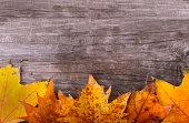 秋の落ち葉フレームの木製の背景の上に