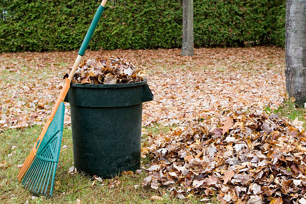 Autumn leaves in a garbage can stock photo