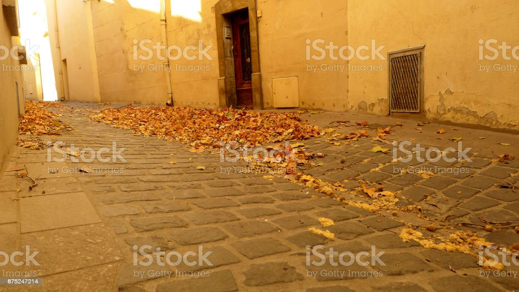 Autumn Leaves in a Street stock photo
