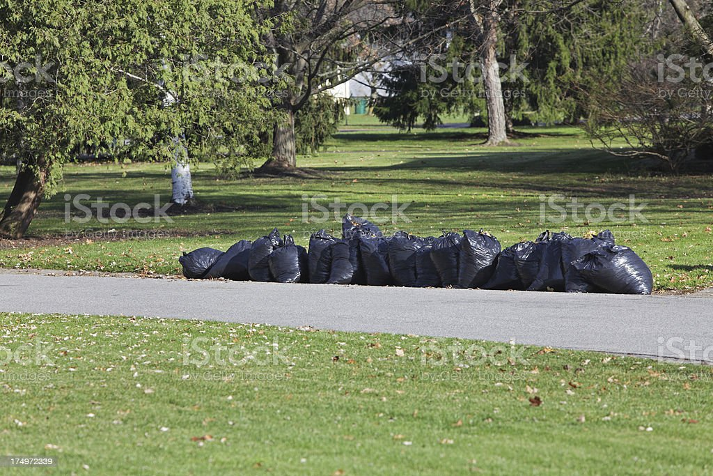 Autumn Leaves in Plastic Bags royalty-free stock photo