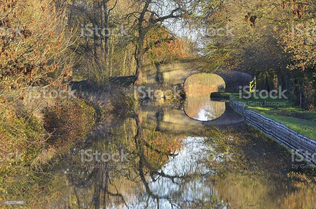 Autumn Leaves Llangollen Canal Wrenbury Cheshire stock photo