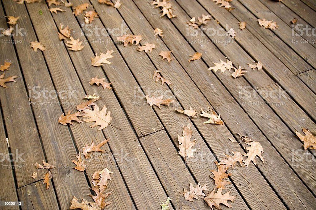 Autumn leaves on a Deck royalty-free stock photo