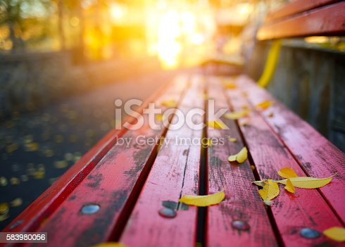 Autumn leaves on a park bench.