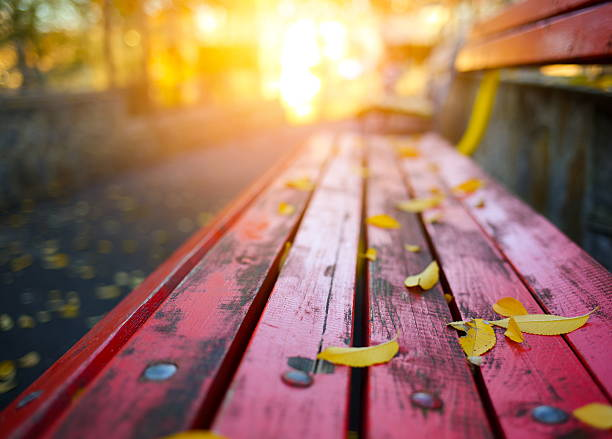 autumn leaves on a park bench - september stock photos and pictures