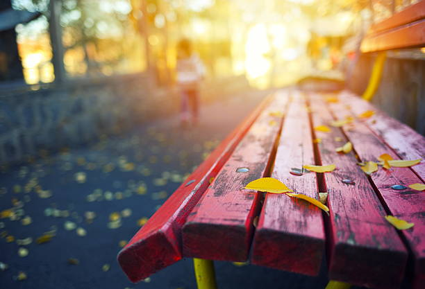 Autumn leaves on a park bench - Photo