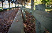 Autumn leaves on a pathway with wooden fence