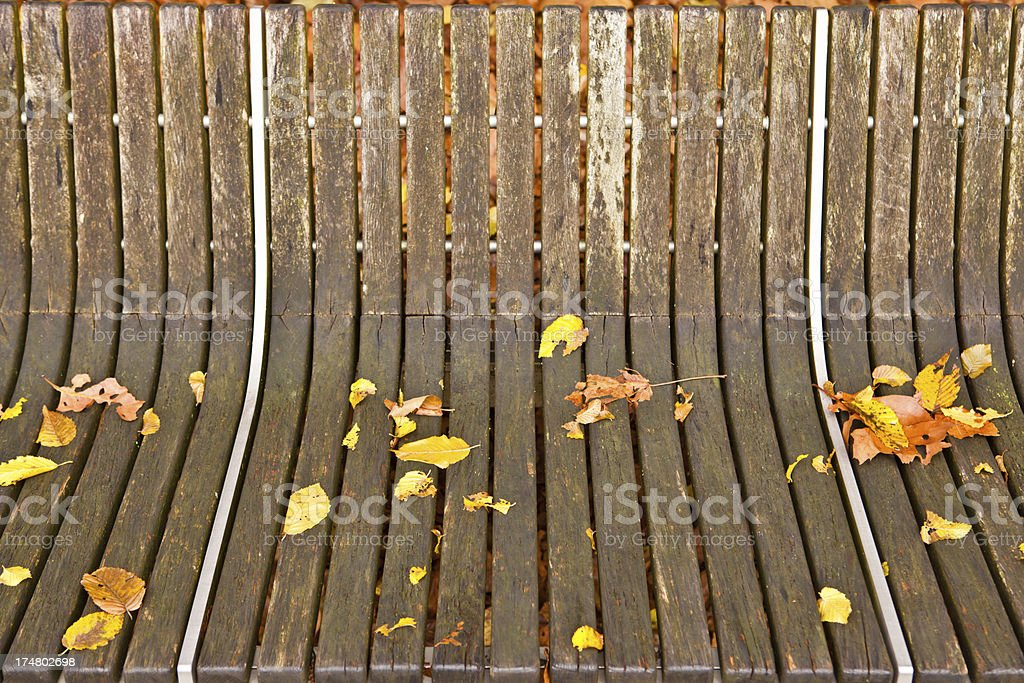 autumn leaves on bench royalty-free stock photo