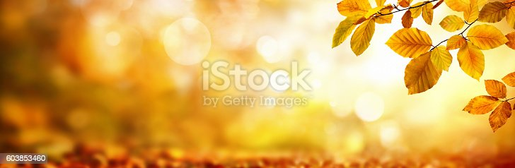 istock Autumn leaves on shimmering blurred background 603853460