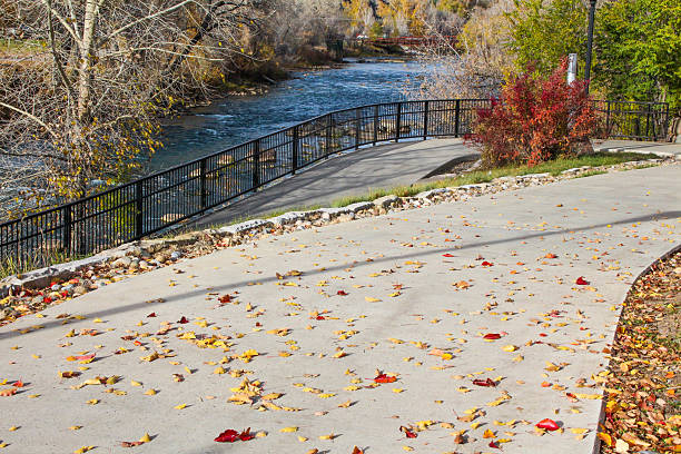 Autumn leaves on the Animas River Trail Taken in Durango, CO on the Animas River Trail.  This trail stretches from one end of town to the other along the beautiful Animas River. animas river stock pictures, royalty-free photos & images