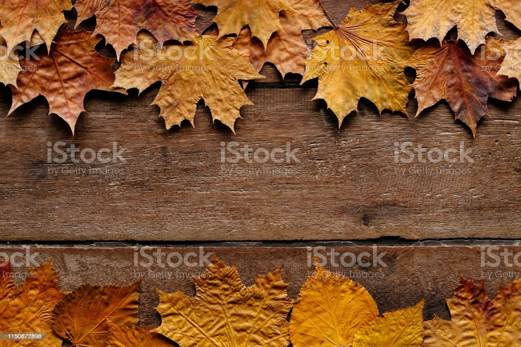 Autumn Leaves On Wooden Background With Copy Space Wallpaper