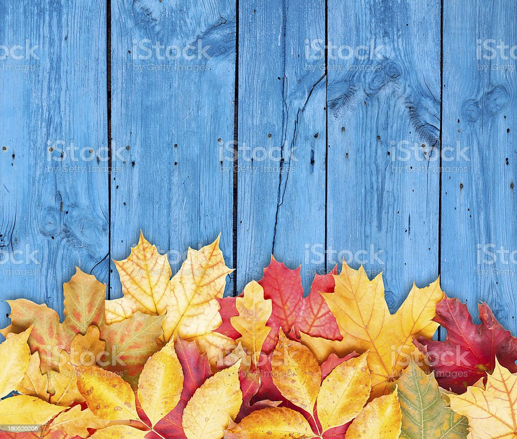 Autumn leaves over wooden background. Copy space. stock photo
