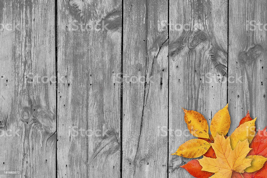 Autumn leaves over wooden background. Copy space. royalty-free stock photo