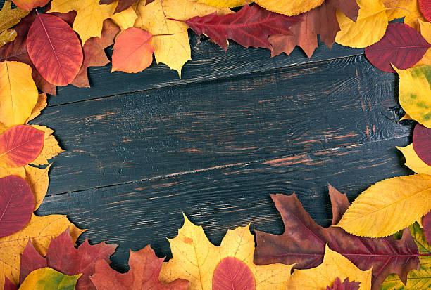 Hojas de otoño sobre fondo de madera. Con espacio de copia - foto de stock