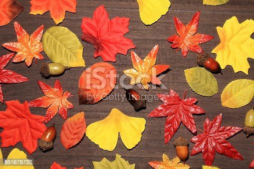 istock Autumn leaves 851678732