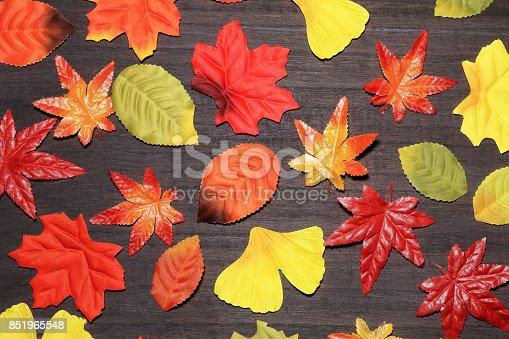 istock Autumn leaves 851965548