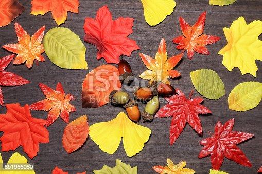 istock Autumn leaves 851966080