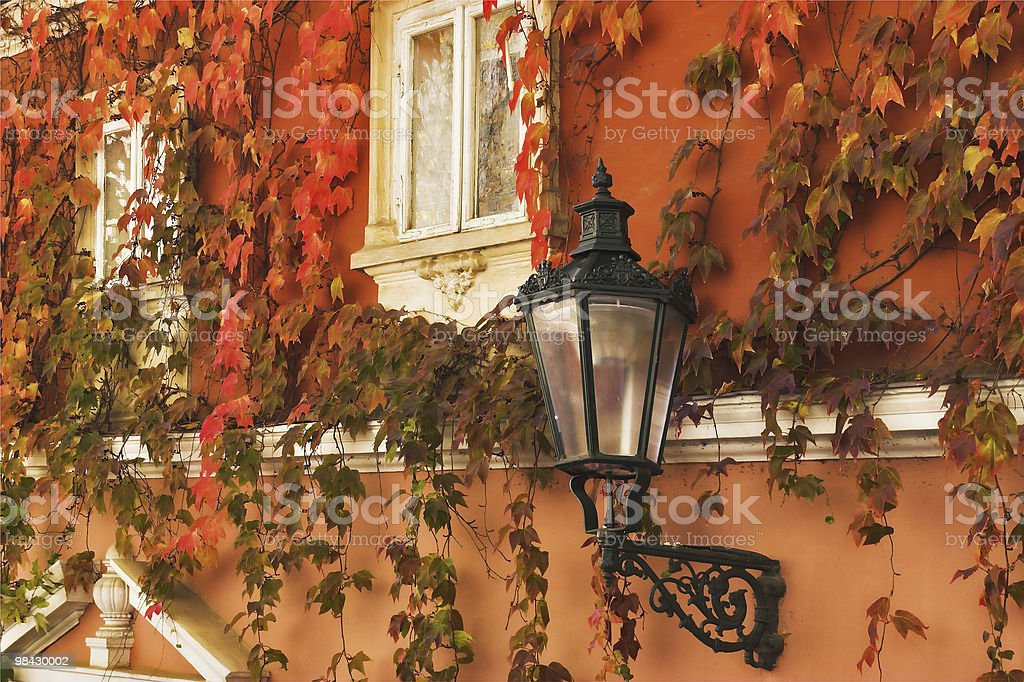 Foglie d'autunno foto stock royalty-free