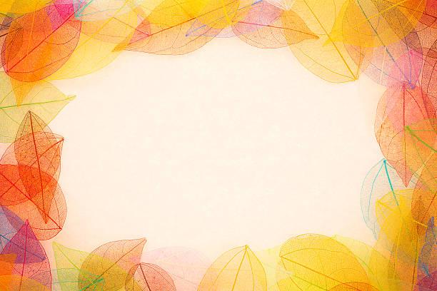 Autumn leaves surrounding a frame stock photo