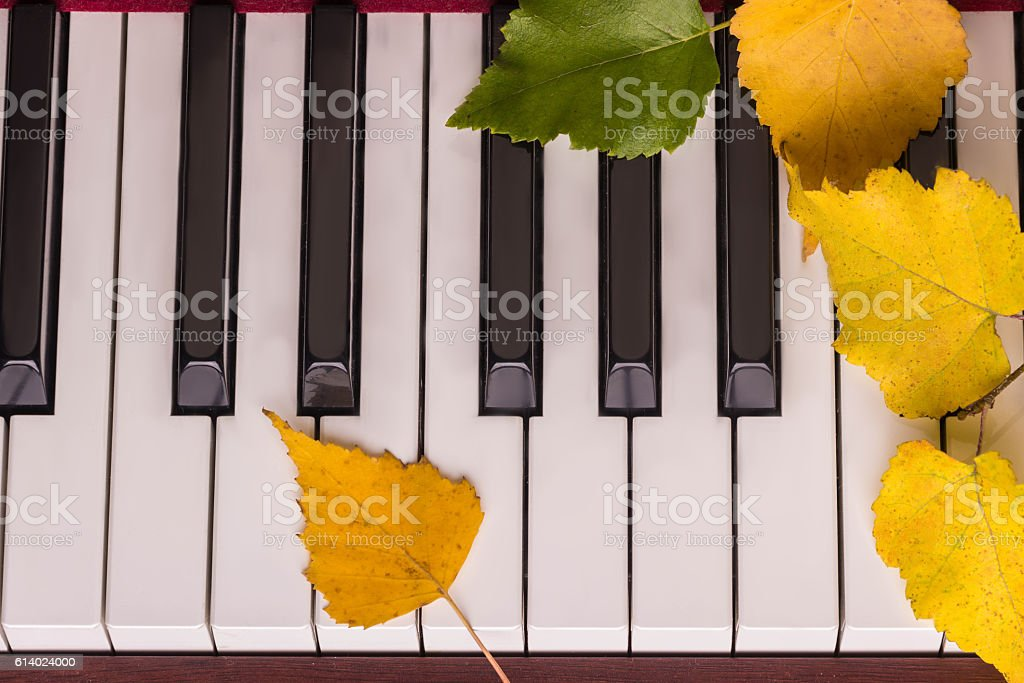 Autumn Leaves The Keys On Piano Stock Photo & More Pictures of Acoustic  Music