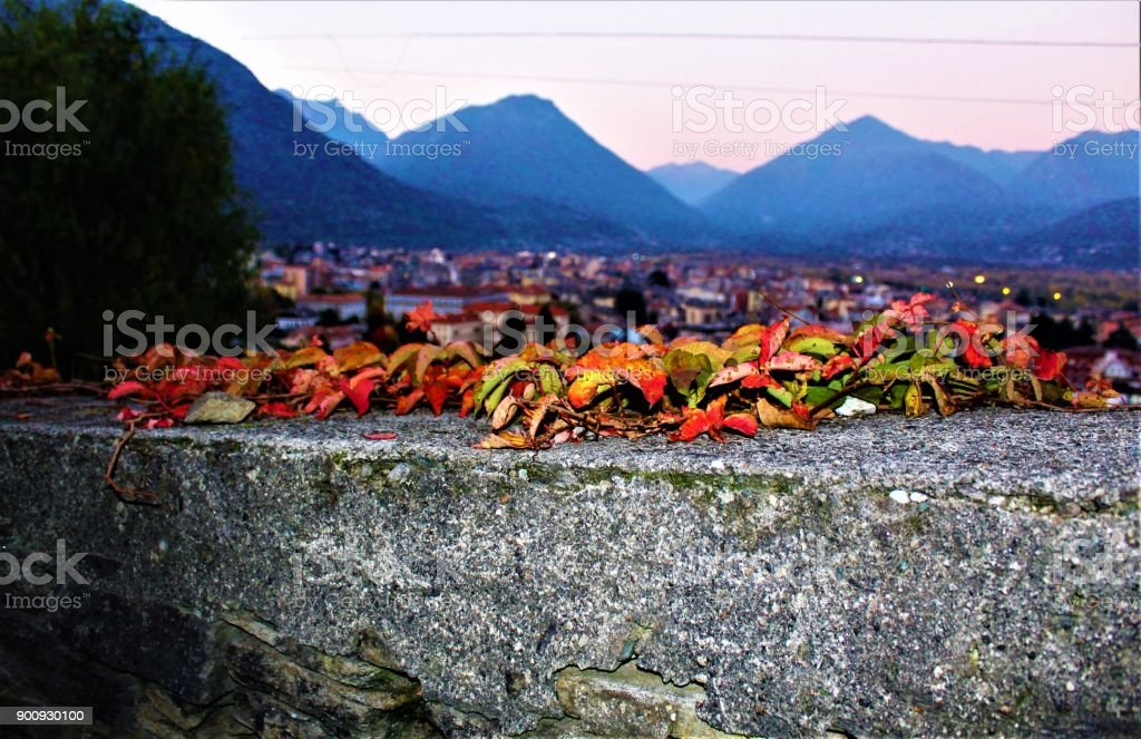 Autumn leaves with a view of Domodossola stock photo