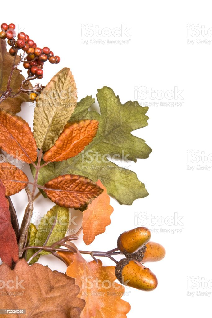 Autumn Leaves with copy  (XL) royalty-free stock photo