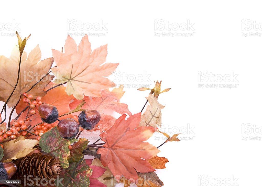 Autumn Leaves XL royalty-free stock photo
