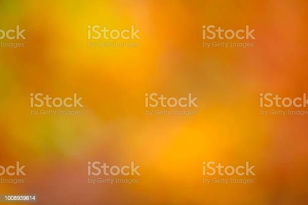 Photo of Autumn Light Background