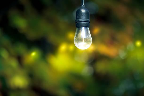 lumière d'automne - josianne toubeix photos et images de collection