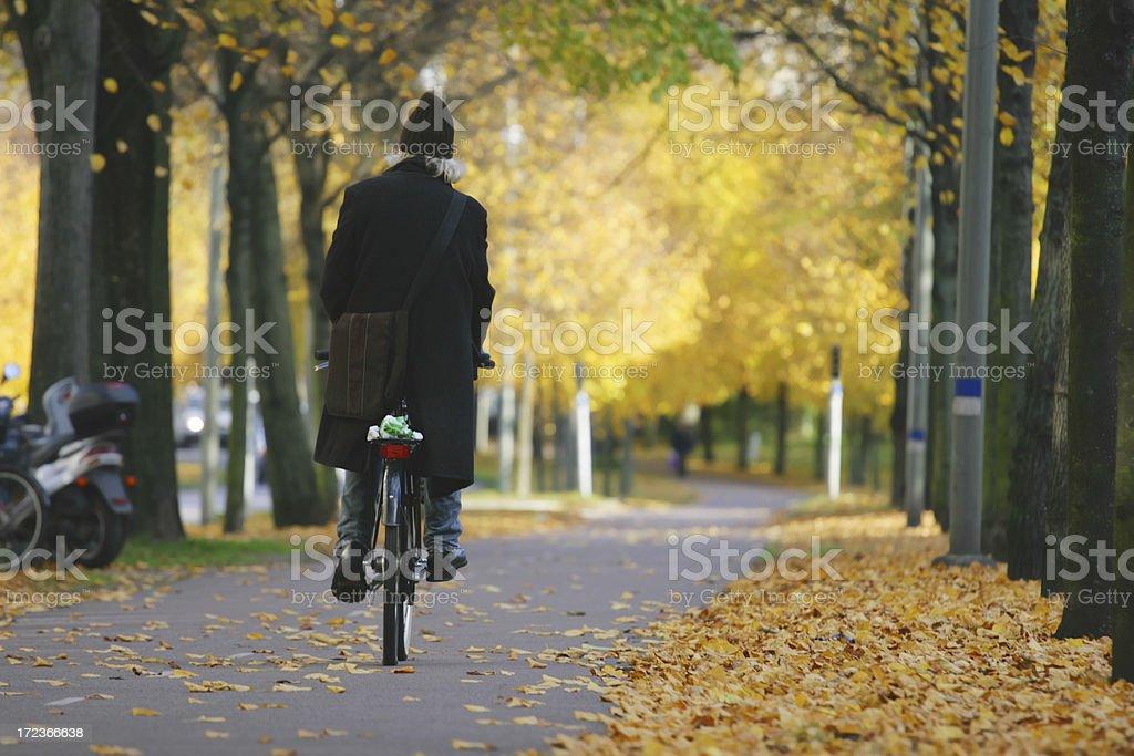 Autumn Man royalty-free stock photo