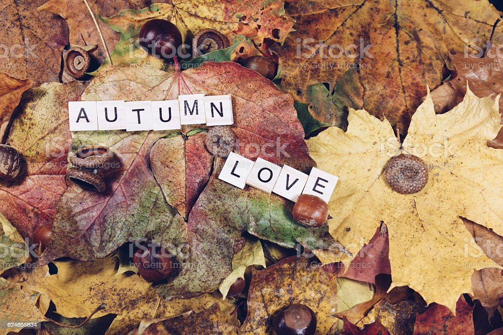 Autumn maple leaves background with Autumn love text.