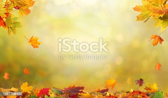 istock Autumn maple leaves .Falling leaves natural background. 1041708400