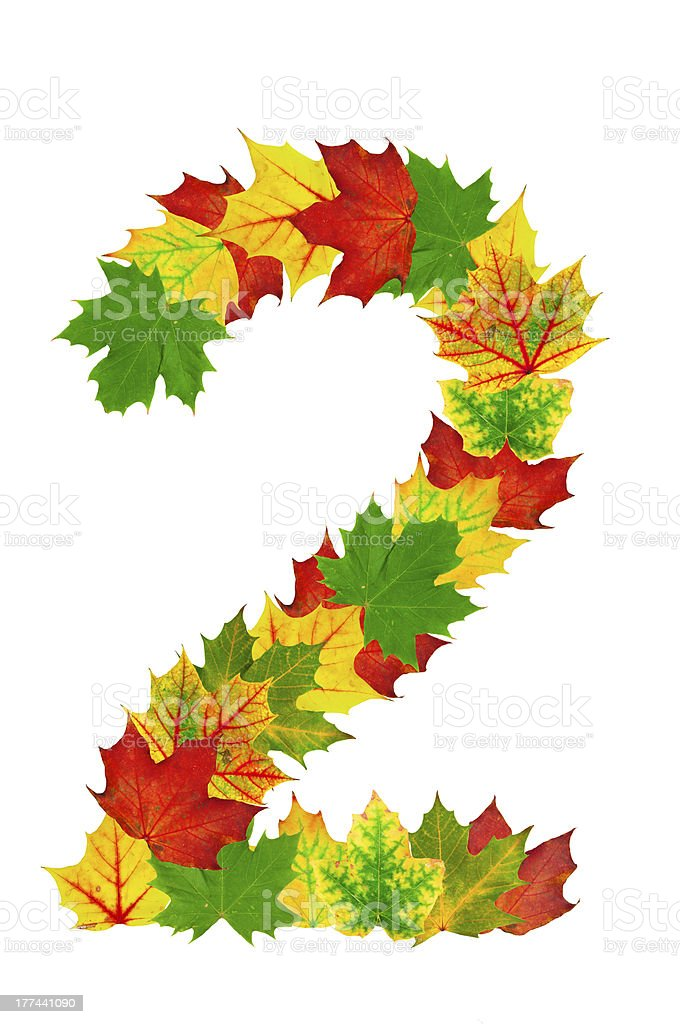 Autumn maple Leaves in the shape of number 2 stock photo
