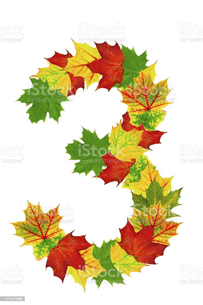 Autumn maple Leaves in the shape of number 3 stock photo