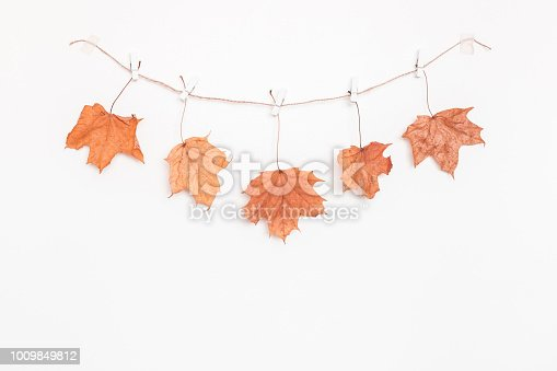 istock Autumn maple leaves on white background. Flat lay, top view 1009849812