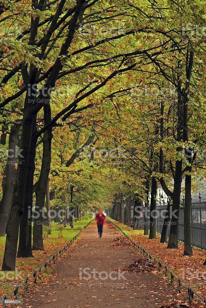 Automne-marathon. photo libre de droits