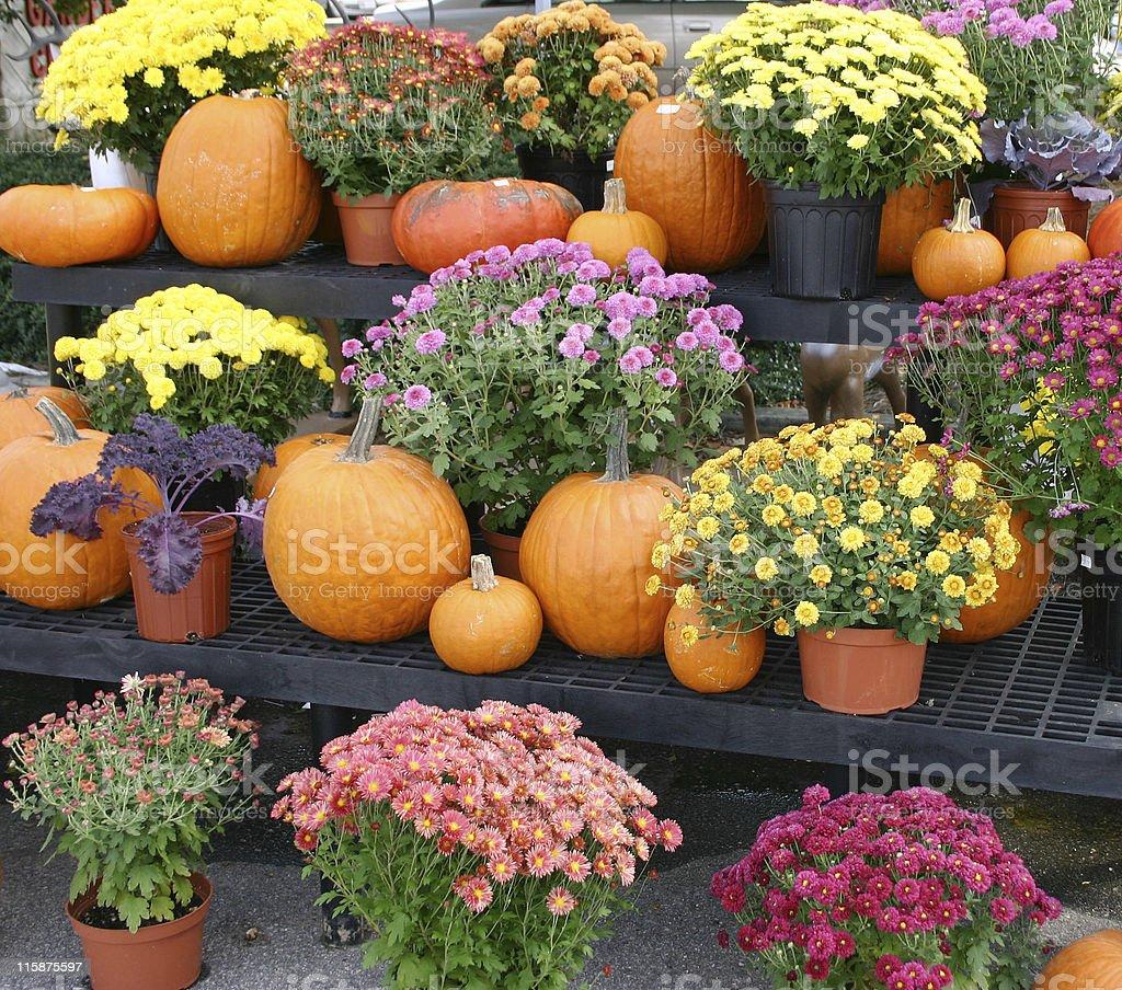 Autumn Market royalty-free stock photo