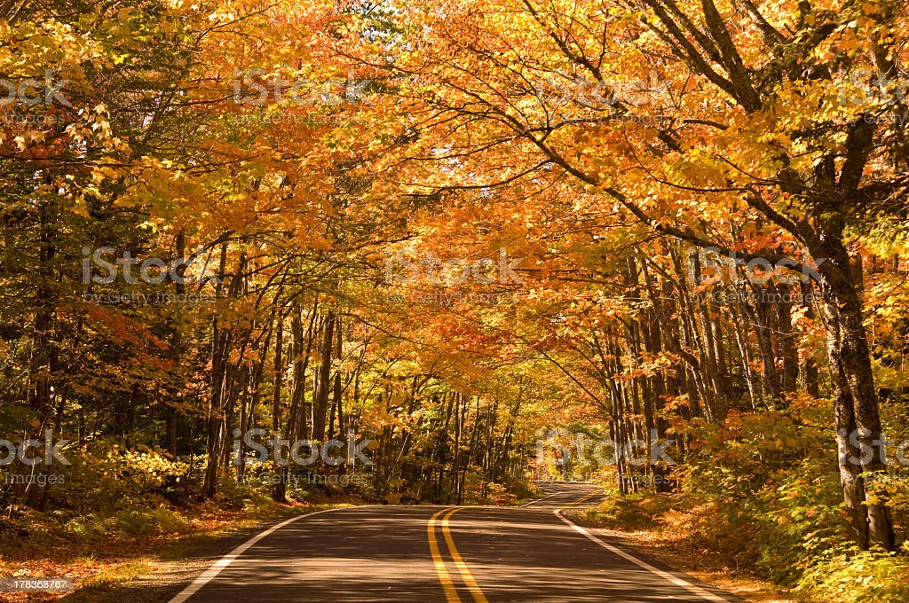 Autumn Michigan Drive in Colorful Leaves stock photo