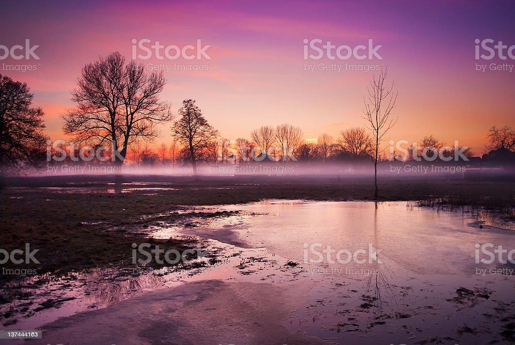 Autumn mist over the marsh - Royalty-free Autumn Stock Photo