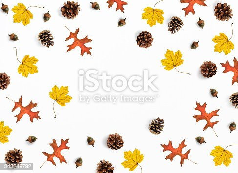 istock Autumn mockup scene. Creative fall composition made of colorful maple, oak leaves, pine cones and acorns, flat lay. Isolated natural objects on the white background.Space for your text, top view 843249792