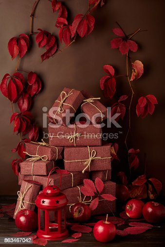 1020586746 istock photo Autumn monochrome still-life in red and burgundy shades. 863467042