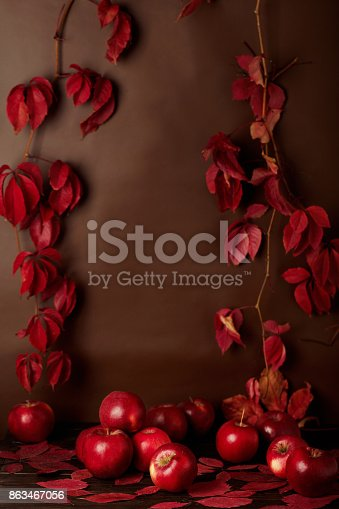 1020586746 istock photo Autumn monochrome still-life in red and burgundy shades. 863467056