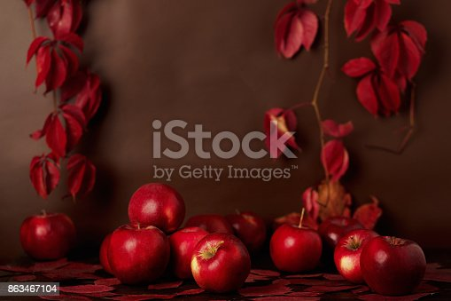 1020586746 istock photo Autumn monochrome still-life in red and burgundy shades. 863467104